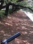 サイクリング_004.JPG