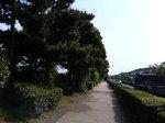 サイクリング_006.JPG